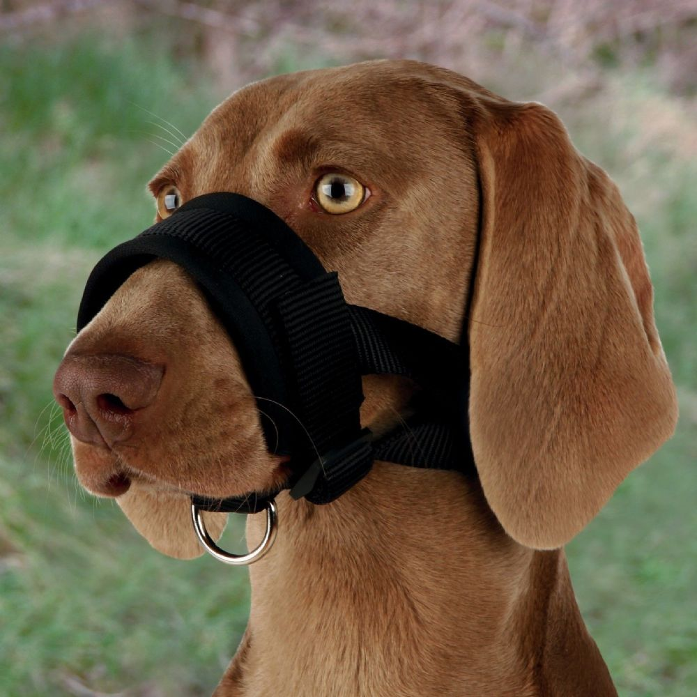 Trixie Nylon Loop DOGS MUZZLE Walking Aid Inhibits Biting Dog Training 3 Sizes